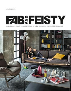 Fab-and-Feisty-14-Cover