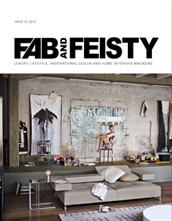Fab-and-Feisty-15-Cover
